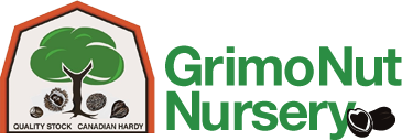 Grimo Nut Nursery